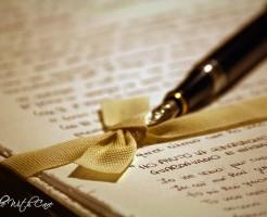 write blogs